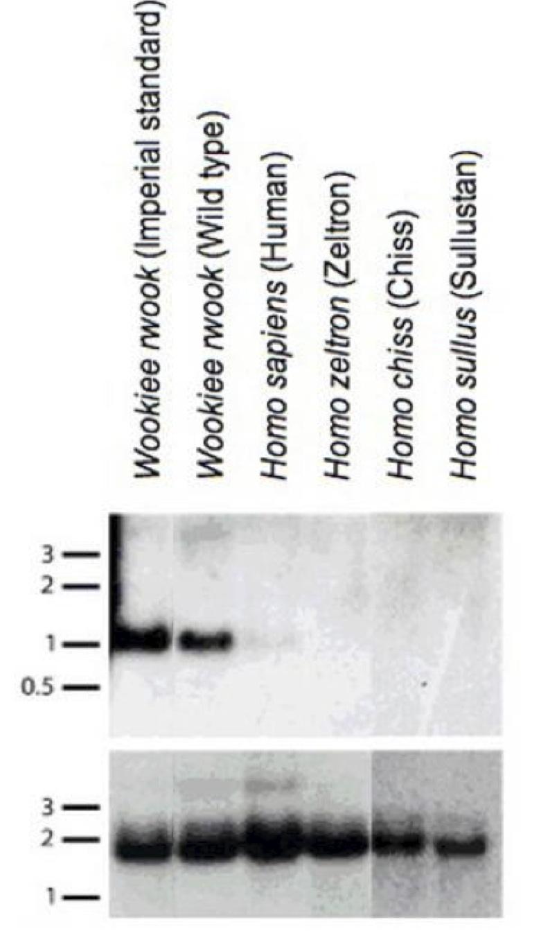 Fig02APCMv01p29